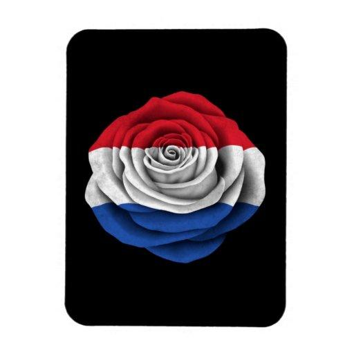 Dutch Rose Flag on Black Rectangle Magnet