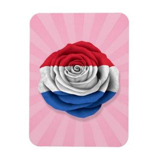 Dutch Rose Flag on Pink Magnet