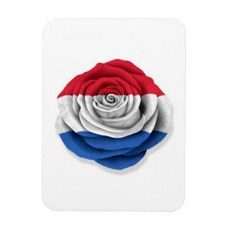 Dutch Rose Flag on White Rectangular Magnet