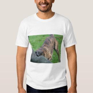 Dutch Shepherd T-shirt