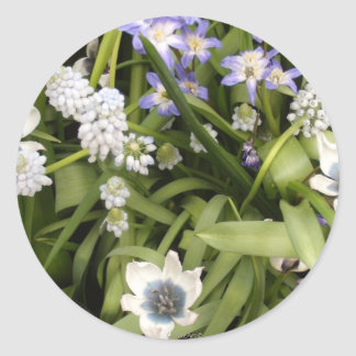 Dutch Tulips Blue & White Stickers