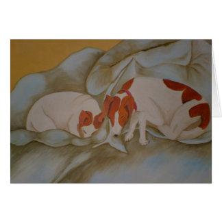 Duvet Dogs Card