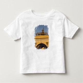 Dvortsovaya Square, Triumphal Arch, sunset Toddler T-Shirt