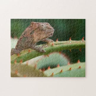 Dwarf Chameleon (Brookesia Exarmata), Algoa Bay Jigsaw Puzzle