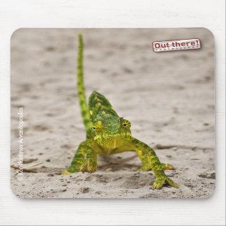 Dwarf Chameleon Mousepad
