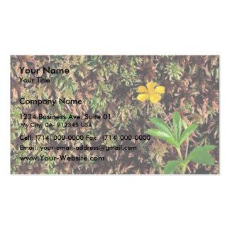 Dwarf Cinquefoil Business Card Templates