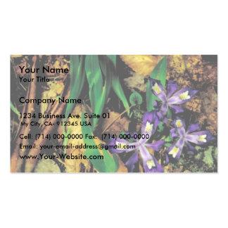 Dwarf crested iris business cards