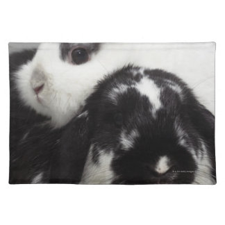 Dwarf-eared rabbit leaning over lop-eared placemat