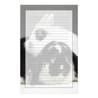 Dwarf-eared rabbit leaning over lop-eared stationery