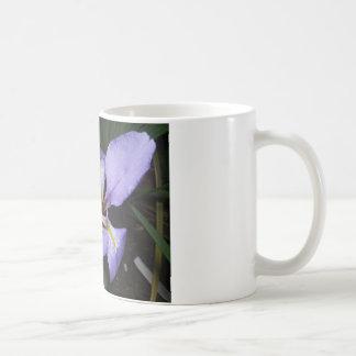 Dwarf Iris Coffee Mug
