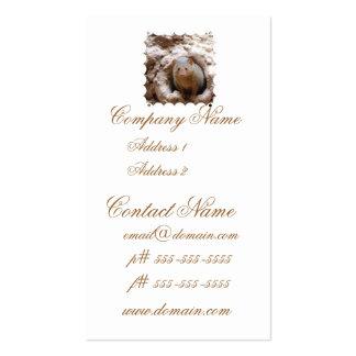 Dwarf Mongoose Business Card Templates