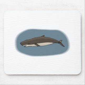 Dwarf Sperm Whale Mouse Pads