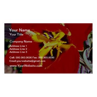 Dwarf tulip flowers business card template