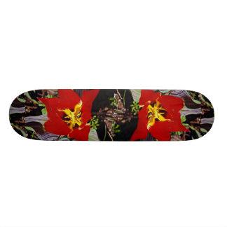 Dwarf tulip skate board decks