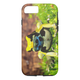 Dyeing Poison Frog, Dendrobates tinctorius, iPhone 8/7 Case