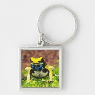 Dyeing Poison Frog Dendrobates tinctorius Key Chain