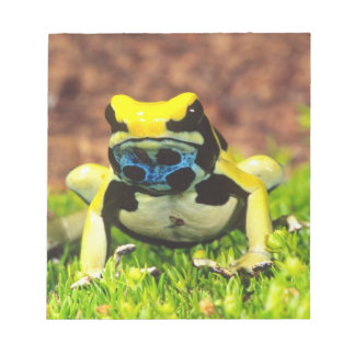 Dyeing Poison Frog, Dendrobates tinctorius, Notepad