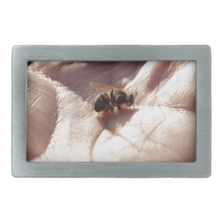Dying bees belt buckles
