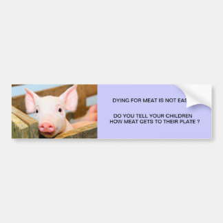 DYING FOR MEAT IS NOT EASY BUMPER STICKER