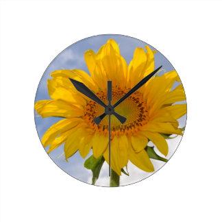 Dynamic Sunflower Clock