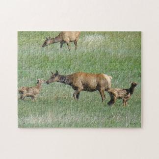 E0003 Cow Elk and Calves Jigsaw Puzzles