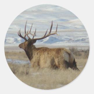 E0022 Bull Elk snowy hills Round Sticker