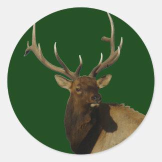 E0050 Bull Elk Round Sticker