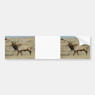 E0055a Bull Elk Bumper Sticker