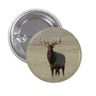 E0059 Bull Elk Pinback Buttons