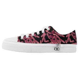 E Coli Shoes - Laced Style