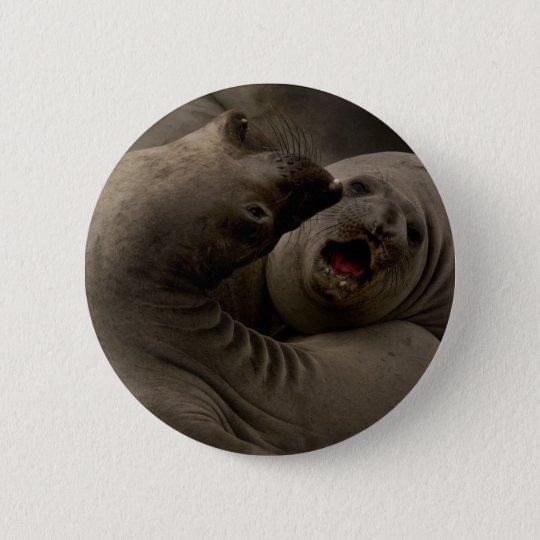 E-Seals Curve Button