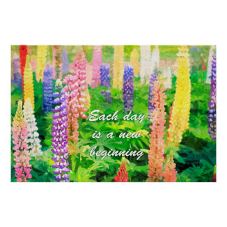 Each Day is a New Beginning Colorful Lupin Flowers Poster