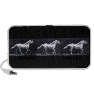 EADWEARD MUYBRIDGE: Horse Trotting Doodle Speakers