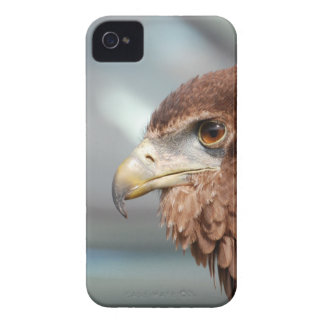 eagle-3 iPhone 4 case