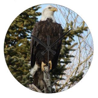 Eagle 3 clock