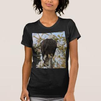 Eagle 4 shirts