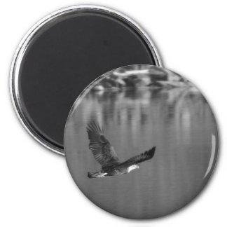 Eagle 6 Cm Round Magnet