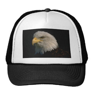 Eagle- American Bald -Patriotism Cap