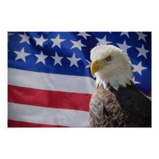 Eagle and American Flag Poster