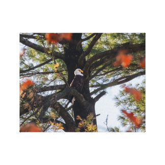 Eagle and Falling Leaves Canvas Print