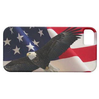Eagle and Flag 2 iPhone 5 Case