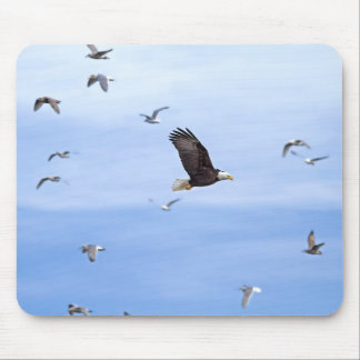 Eagle and Seagulls Flying Mouse Pad