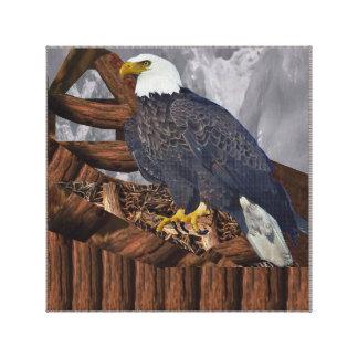 Eagle Bird Prey Nest America King Majestic Symbol Canvas Print