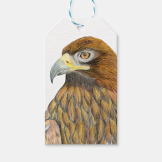 Eagle Bird Watercolour Painting Artwork Gift Wrap Gift Tags