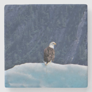 Eagle Chilling on an Iceberg Marble Coaster