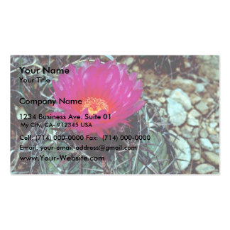 Eagle Claw Cactus Business Cards