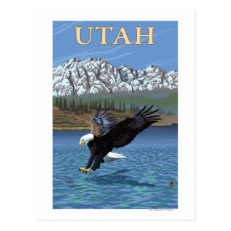 Eagle DivingUtah Postcard