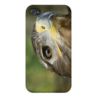 Eagle Eye  iPhone Case Case For iPhone 4