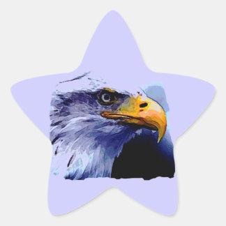 Eagle Eye Star Stickers