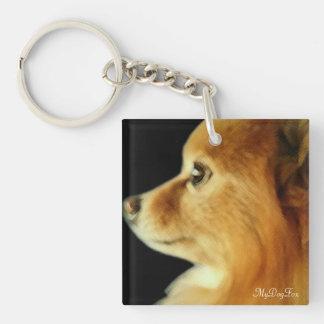 Eagle Eyed Pomeranian Single-Sided Square Acrylic Key Ring